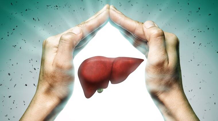 Best Supplements for a Healthy Liver